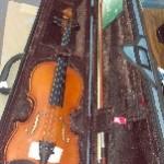 Stenton Rialto  3/4 con astuccio ed arco Violino Acustico